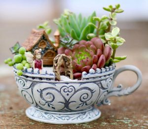 Mini Succulent Gardens - Marin Master Gardeners @ Library Meeting Room | San Rafael | California | United States